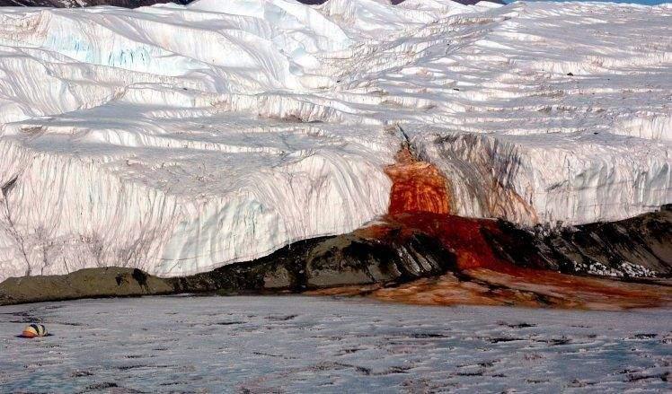 بعد أكثر من 100 عام.. حل لغز نهر الدماء الجليدي