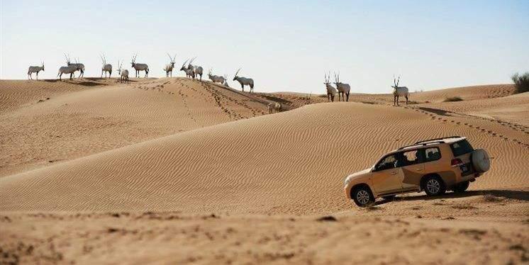 أماكن ذات طبيعة خلابة في الإمارات