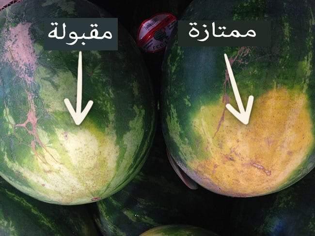 كيف تختار البطيخ حلو الطعم في الصيف؟