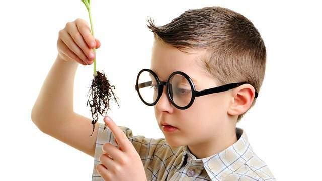 دور الخيال في نمو عقل الطفل