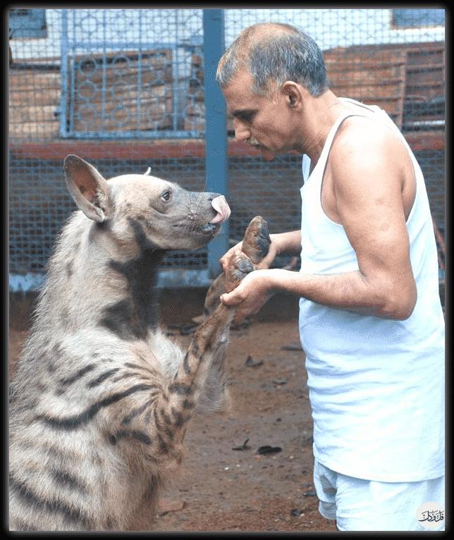 يأوي 300 حيوانا.. الطبيب براكاش الذي تعاطف مع قرد رضيع فحول منزله لحديقة حيوانات