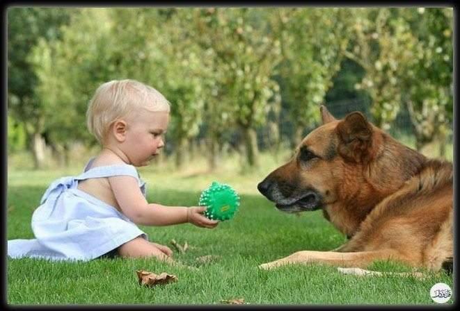 6 فوائد مثيرة لتنشئة الأطفال وسط الحيوانات الأليفة