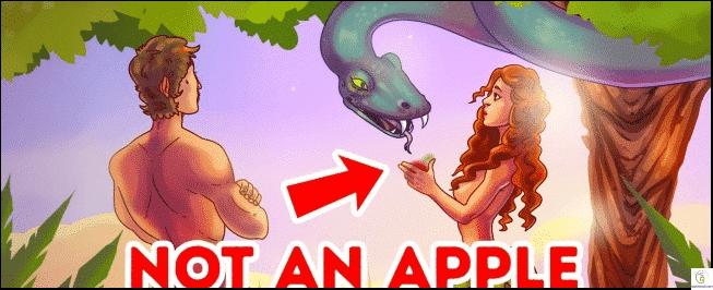 بناة الأهرامات وأكل حواء للتفاحة.. أكاذيب مازال يصدقها الجميع للآن