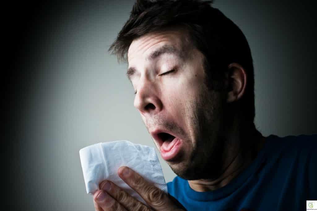 أعشاب طبيعية تقضي على الإنفلونزا في لمح البصر