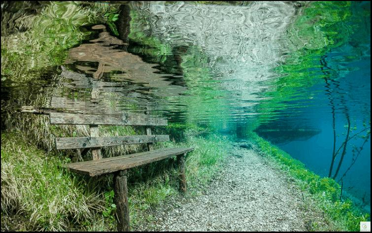 """ظاهرة مذهلة.. حديقة عادية شتاءً و""""بحيرة خضراء"""" صيفًا! 5"""