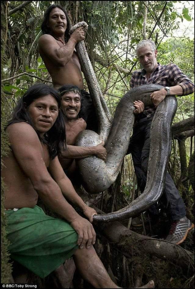 """رحلة الإمساك بالثعبان """"آكل الرجال"""" في غابات الأمازون! 4"""