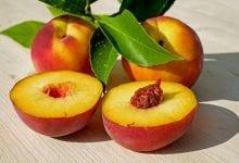 حلول عملية لمشكلة أكسدة الفواكه الشائعة