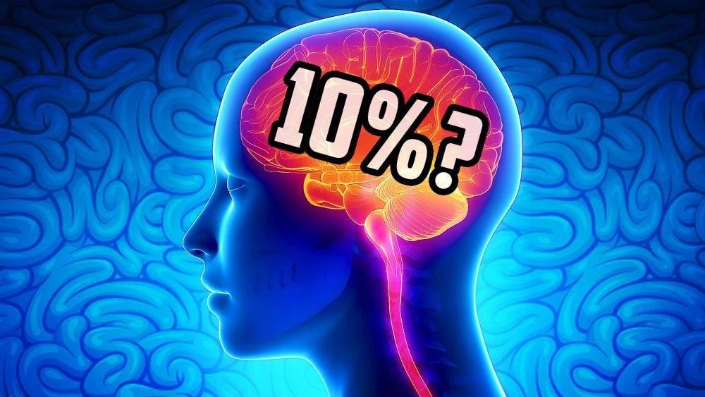 فيتامينات المخ.. ينصح بالحصول عليها من أجل عقول أفضل