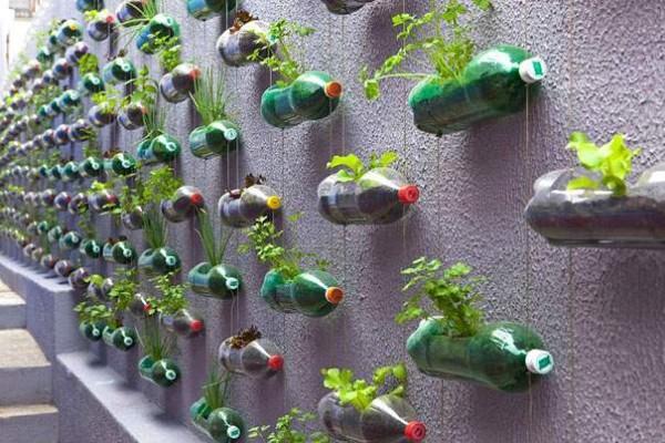 بخطوات بسيطة.. حول الزجاجات البلاستيكية لديكور مبهر لمنزلك