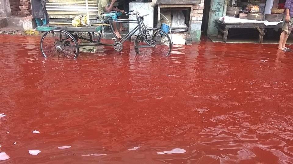 أمطار حمراء.. وأغرب الظواهر الطبيعية في التاريخ