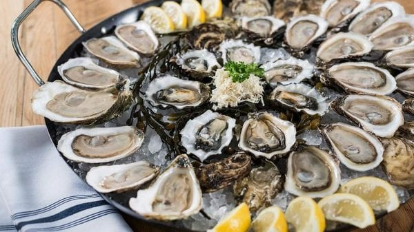 seafood oysters full
