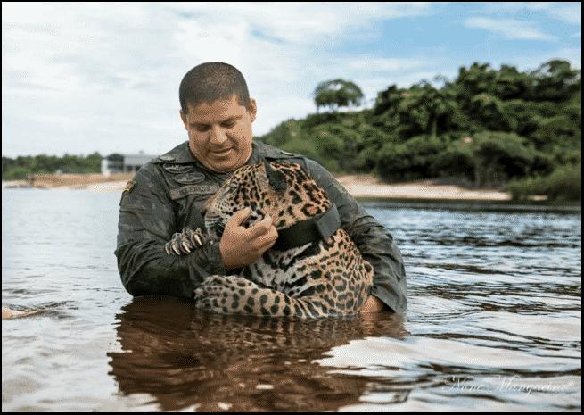 حيوانات لم تنس توجيه الشكر لمنقذيها