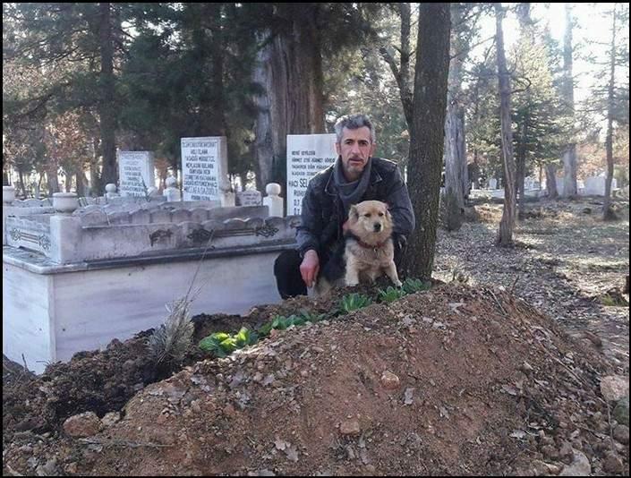 بعد وفاة مالكه.. السر المؤثر وراء اختفاء كلب يوميا لساعات