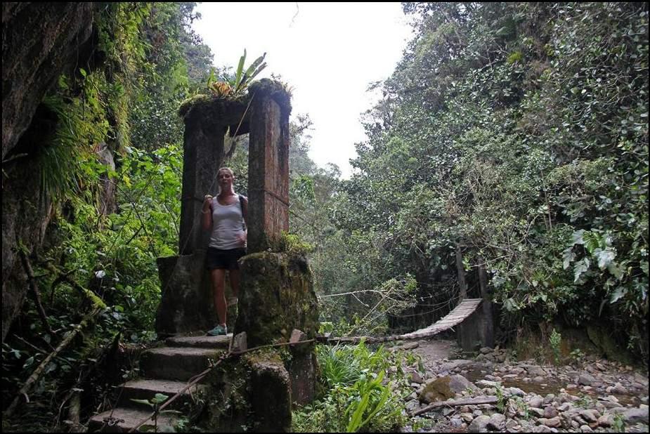 زيارة إلى وادي كوكورا.. وأغرب أشجار النخيل في العالم 4