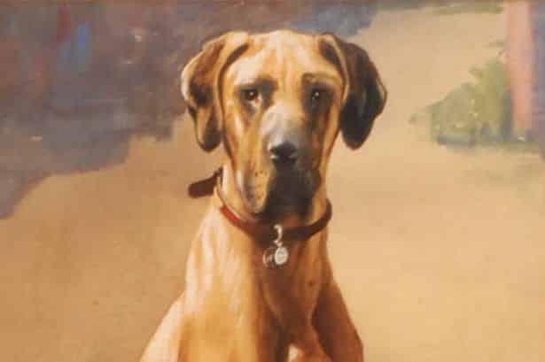 أنقذت مالكها خلال الحرب العالمية بأغرب طريقة.. جوليانا الكلبة البطلة