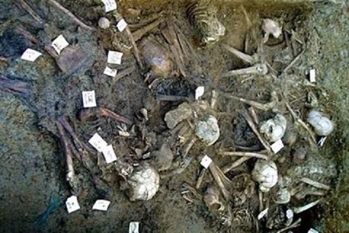 هل تم العثور على بقايا جيش فرعون في البحر الأحمر؟