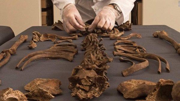 """الـ DNA يكشف سر جثة كائن """"تشيلي"""" الفضائي"""