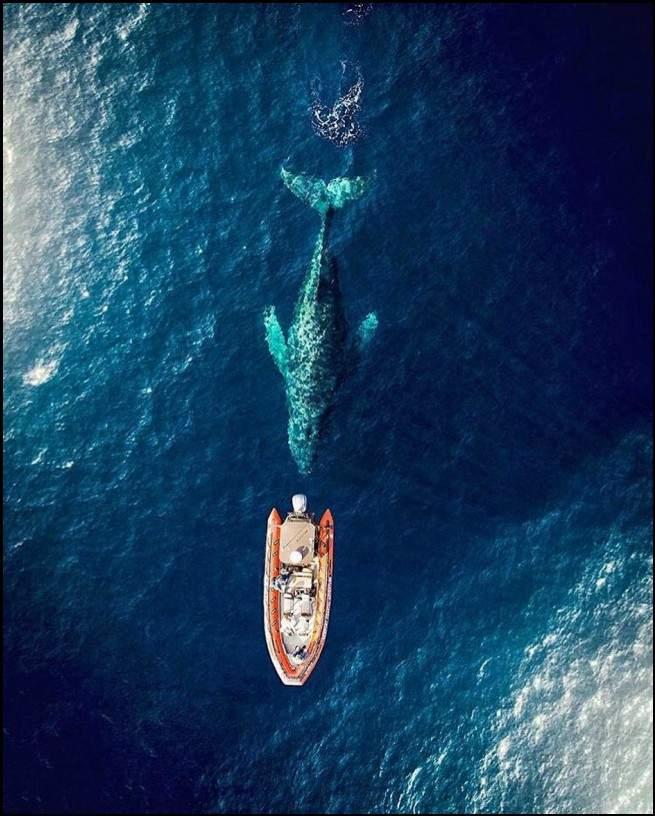 """أروع الصور الملتقطة من طائرات """"الدرون"""""""
