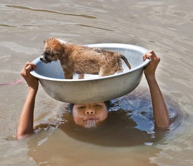 صور ملهمة فجرت الدموع من حول العالم عند رؤيتها