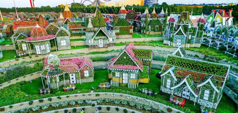 """""""دبي ميراكل جاردن"""".. الحديقة المعجزة"""