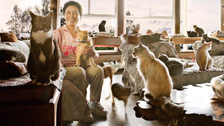لينيا لاتانزيو.. المرأة التي تركت منزلها الفاخر لآلاف القطط