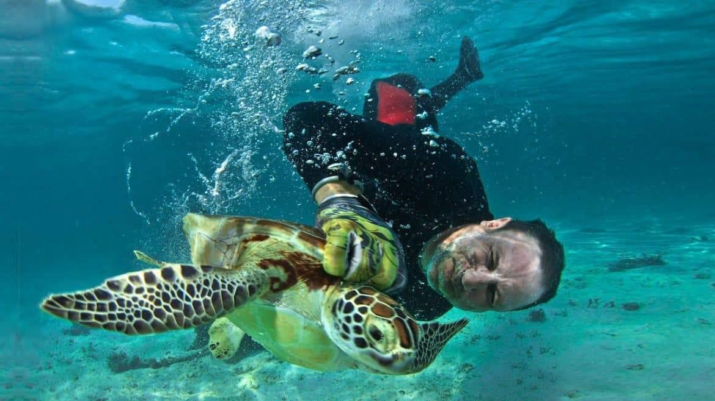 دكتور سلحفاة.. الخبير الذي ينقذ السلاحف المائية من الانقراض عبر صيدها!