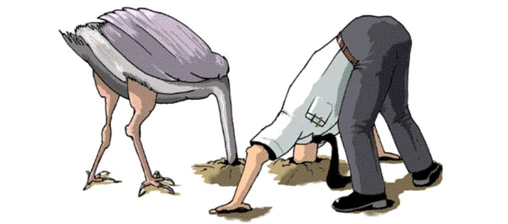 هل يدفن النعام رأسه في الرمال حقا؟