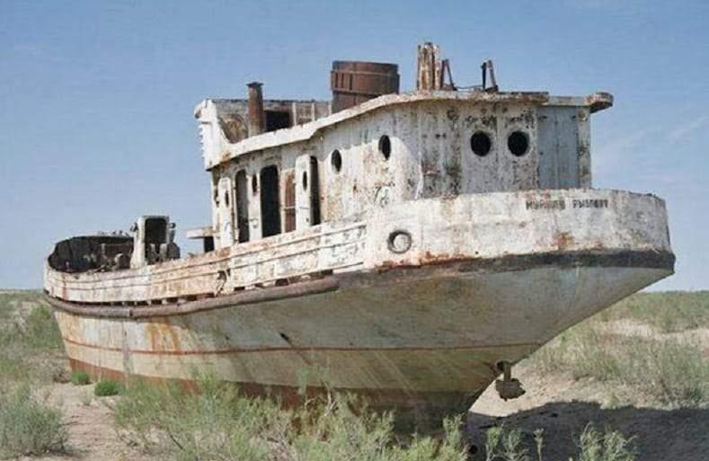 زراعة القطن تحول بحر آرال إلى مقبرة للسفن