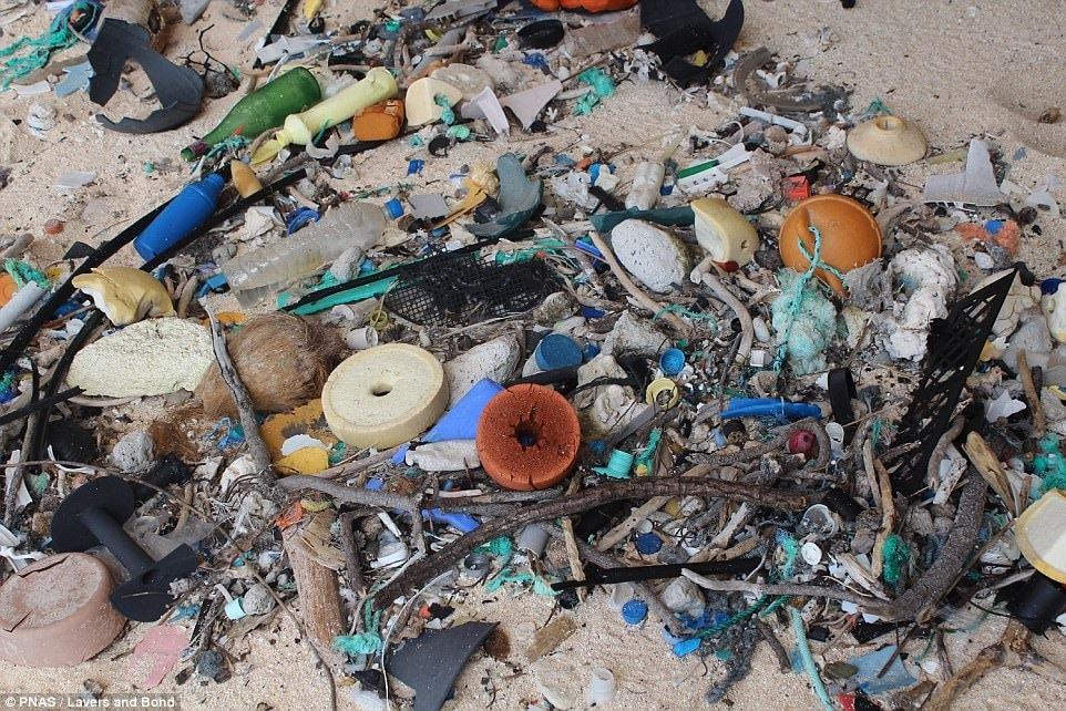 هندرسون.. الجزيرة الأكثر تلوثا في العالم رغم خلوها من السكان!