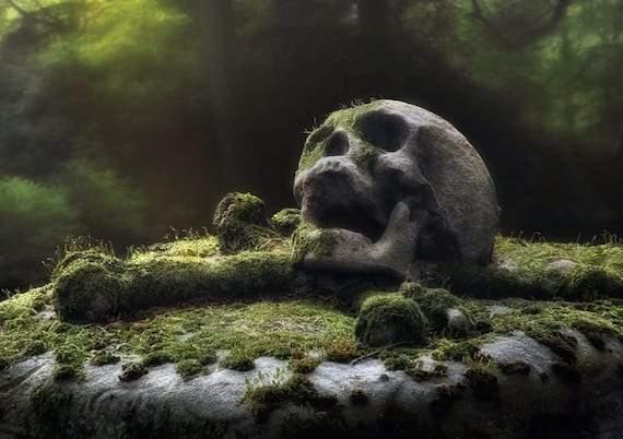 حديقة الولاية المظلمة في هاواي.. ظواهر خارقة وحكايات مرعبة