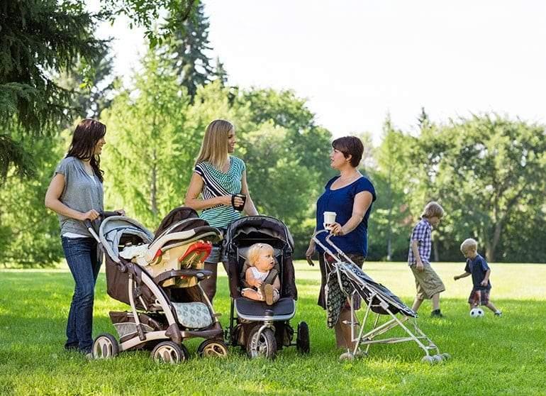 5 طرق بسيطة لإطالة عمر الأمهات