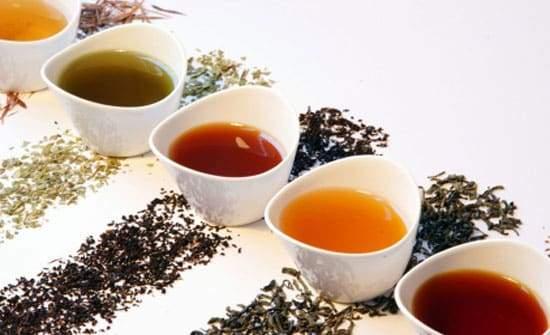 5 أنواع من الشاي وفوائدها المذهلة
