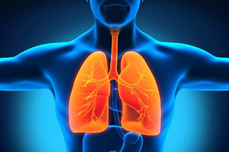 6 نصائح ضرورية للحفاظ على صحة الرئتين