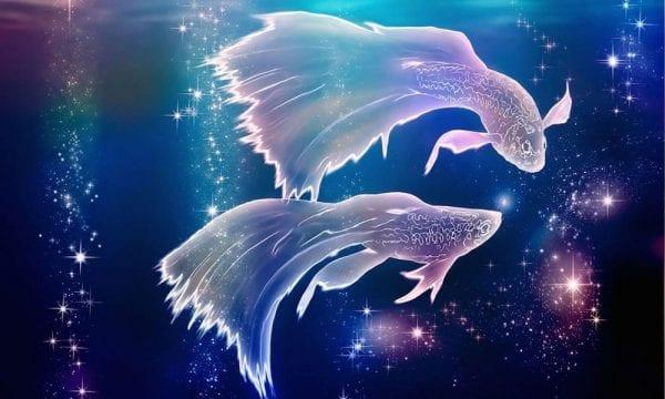 برج السرطان ونسب توافقه مع مواليد برج الحوت في العلاقات المختلفة