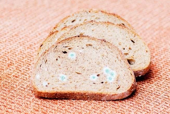 ماذا يحدث لجسمك عند تناول خبز يُغطيه العفن؟