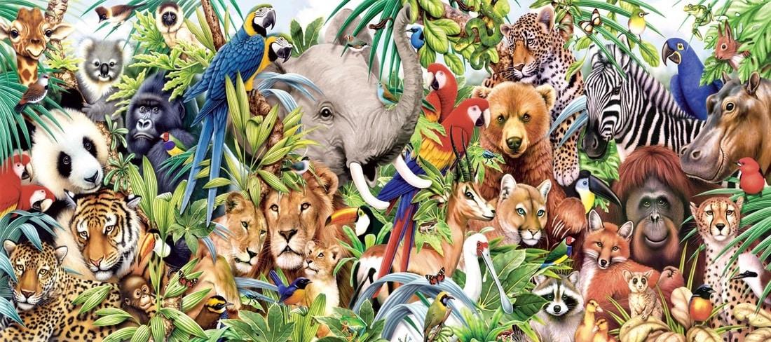 اليوم العالمي للحيوان.. النشأة والنضال من أجل إقامته