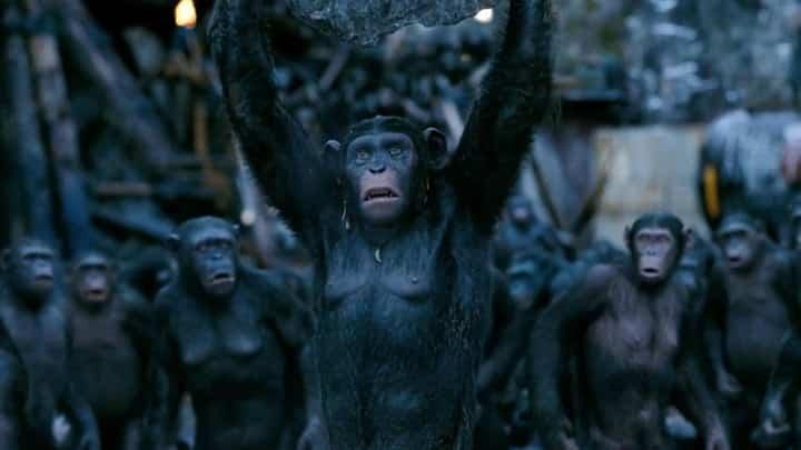 كوكب القرود..فيلم خيال علمي قد تتكرر أحداثه على أرض الواقع والبداية من الهند