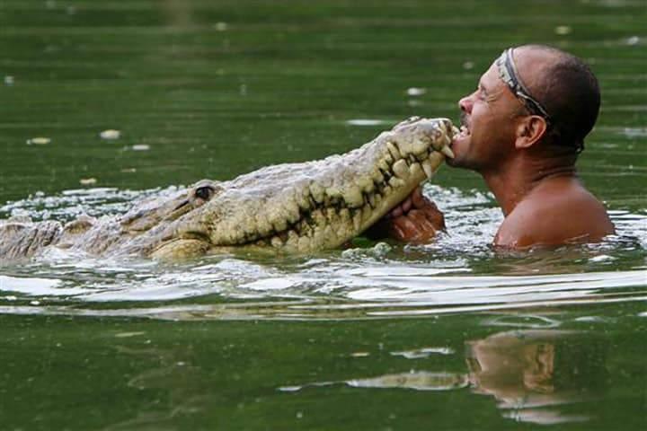 صداقة عميقة بين إنسان وتمساح شرس!
