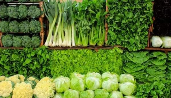 نتيجة بحث الصور عن الخضروات الورقية