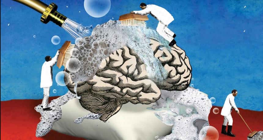 علاقة بين الرسم والشيخوخة.. و7 أسرار عن الدماغ