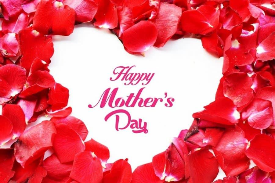 مصطفى أمين.. صاحب فكرة الاحتفال بـ«عيد الأم» في مصر