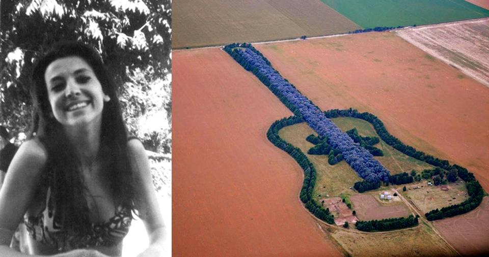 الإبداع عبر 7000 شجرة.. رجل ينسق مزرعة على شكل جيتار وفاء لزوجته
