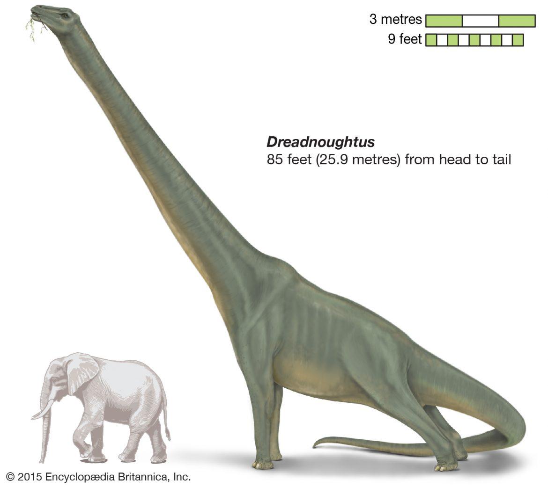 أكبر 5 ديناصورات عرفها العالم قبل الانقراض
