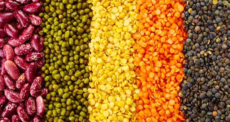 غير اللحوم.. 4 مصادر مذهلة لـ «البروتين»