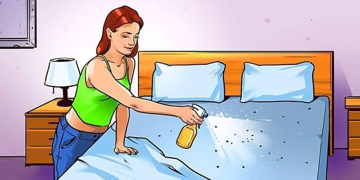 12 طريقة آمنة للتخلص من بق الفراش