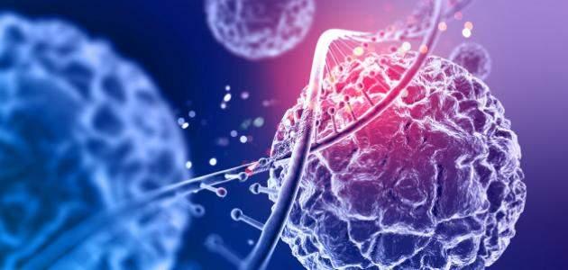 كيف فسر العلم نظرية الخلية؟ 4