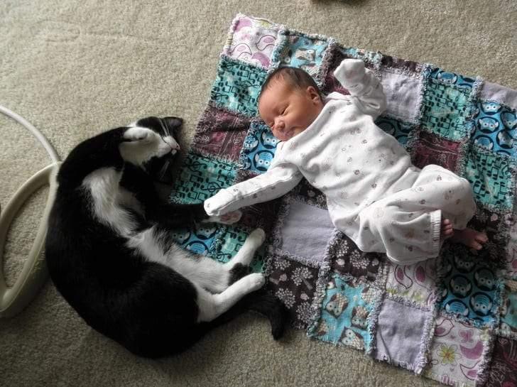 صور تكشف عن روعة الصداقة بين الحيوانات والأطفال