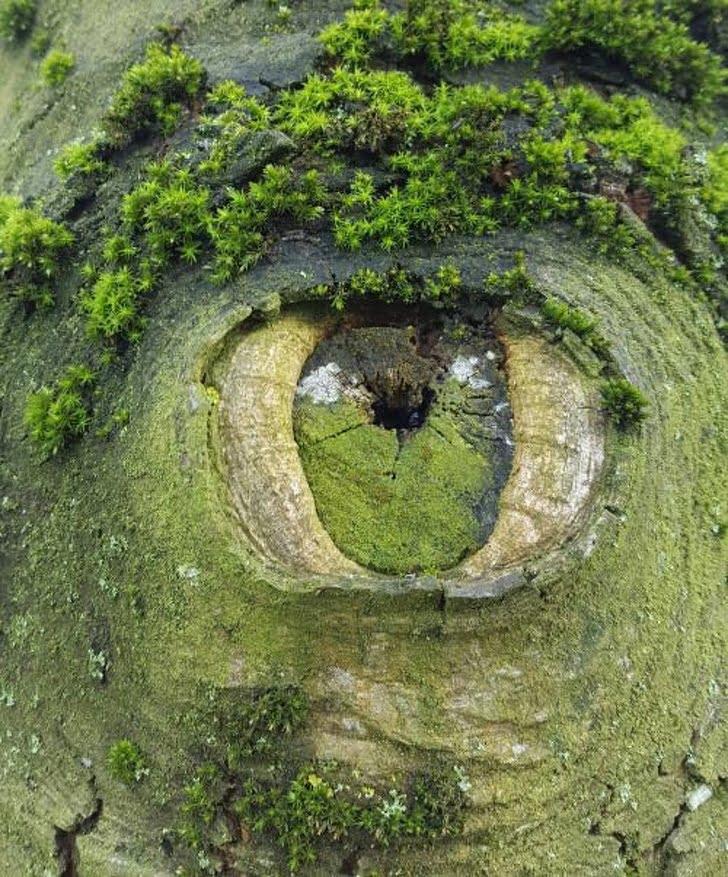 صور رائعة تكشف عن الجانب المذهل لكوكب الأرض