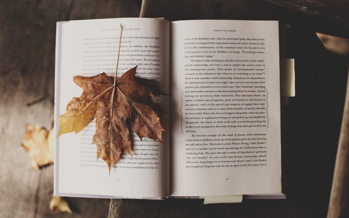 7 نصائح لاكتساب عادة القراءة يوميا