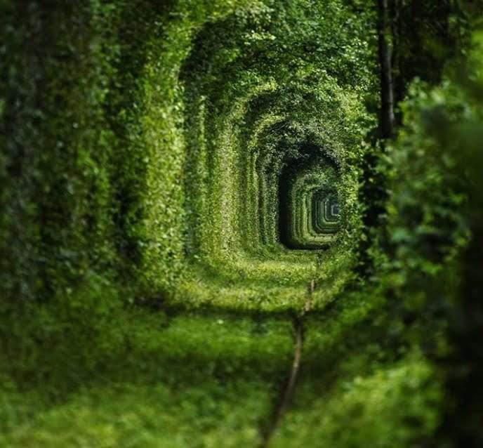 نفق الحب من عجائب الطبيعة